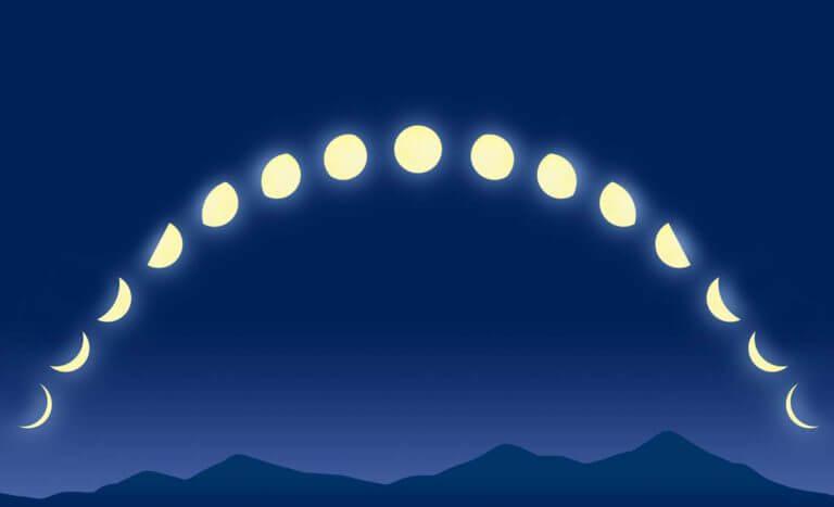 満月新月の月齢サイクル